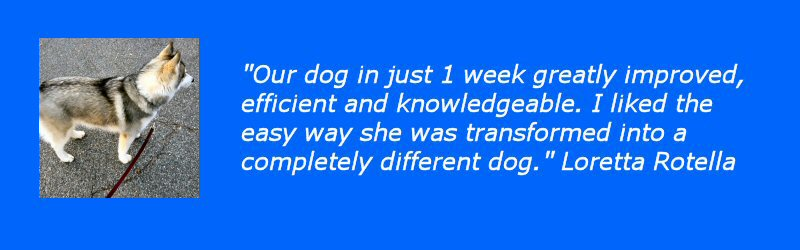 another great testimonial