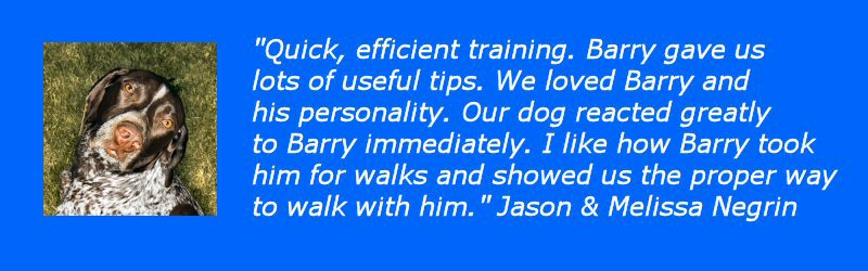 great reviews from our clients