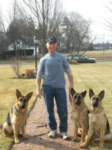 three dogs with the dog trainer