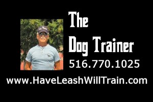 dog trainer phone number