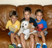 3 little kids with their dog