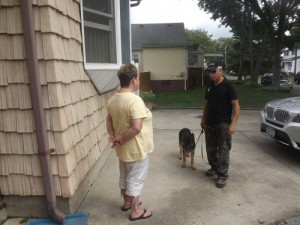 dog training at home
